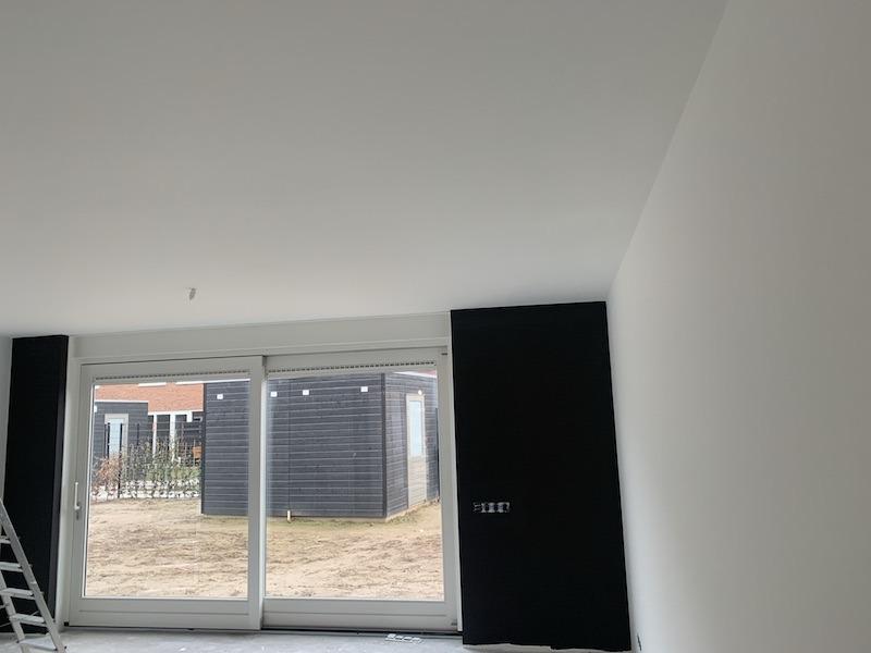 Schilderwerk Wandproject, professionele schilder Den Bosch,